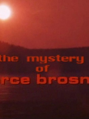 2010-Johan-Wilen---still4_the_mystery_of_pierce_brosnan-(master-project-2010)